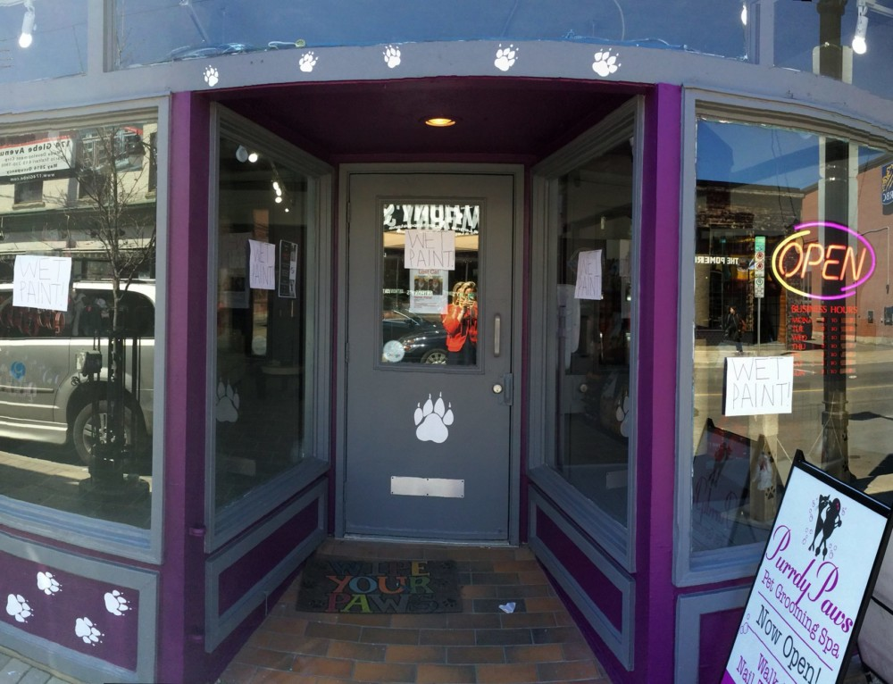 A Philosophy of Caring: Purrdy Paws Mobile Grooming and Pet Spa
