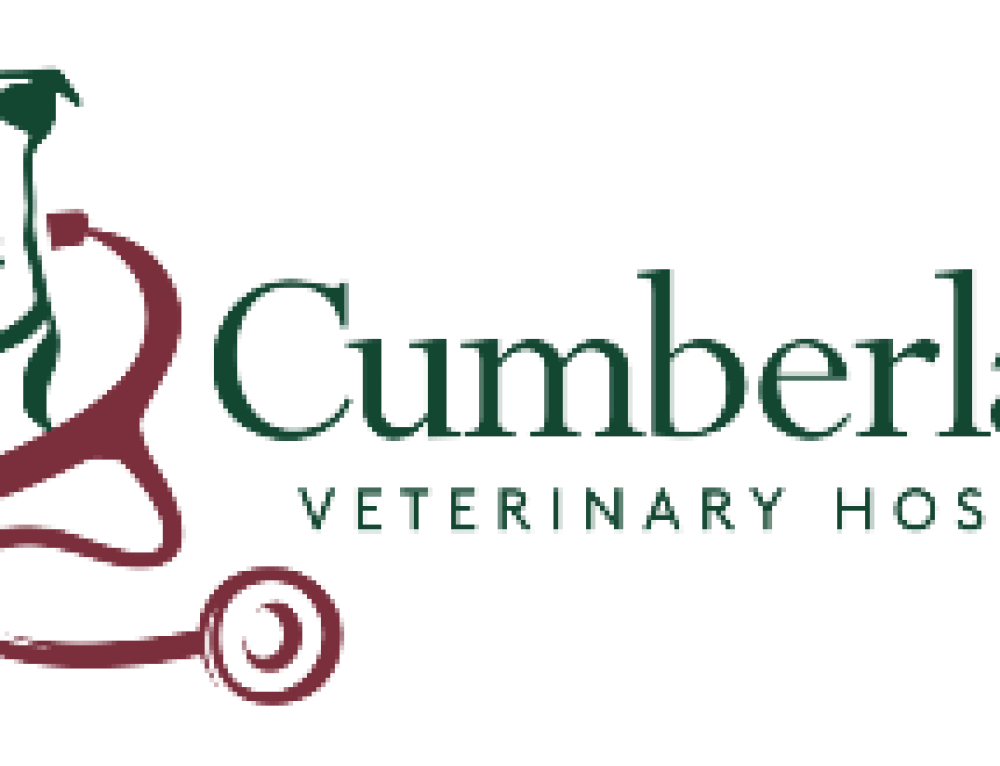 Cumberland veterinary hospital