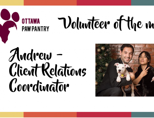 Andrew is our Volunteer of the Month!