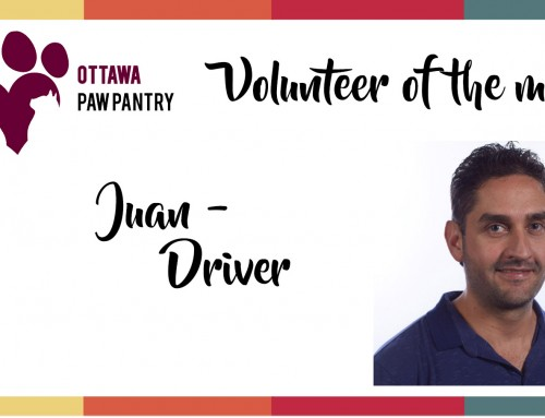 Volunteer of the month: Juan